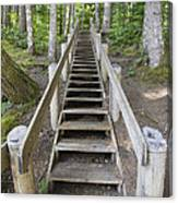 Wood Staircase In Hiking Trail Canvas Print
