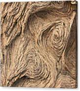 Wood Swirls Canvas Print