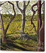 Wooded Glade Canvas Print