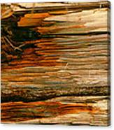 Wooden Abstract Canvas Print
