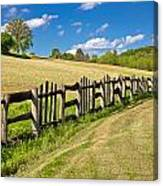 Wooden Fence In Green Landscape Canvas Print