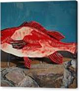 Wooden Red Snapper Canvas Print