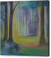 Woodland At Wilsonia Canvas Print