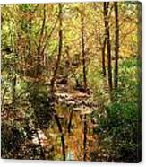 Woodland Brook  Canvas Print
