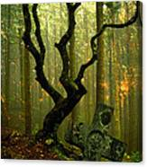 Woodland Burial Canvas Print