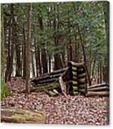 Woodland Cabin Ruins Canvas Print
