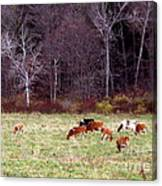 Woodland Dairy Canvas Print