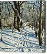 Woodland Journey Canvas Print