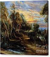 Woodland Scenery Canvas Print
