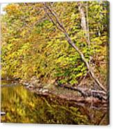 Woodland Stream Early Autumn Montgomery County Pennsylvania Canvas Print