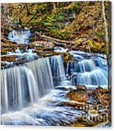 Wateralls In The Woods Canvas Print