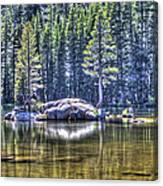 Woods Lake 1 Canvas Print