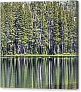 Woods Lake 4 Canvas Print