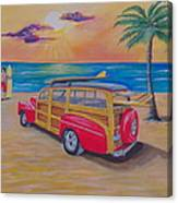 Woody on the beach Canvas Print