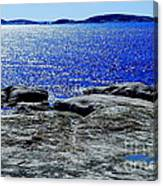Woody's Island Canvas Print