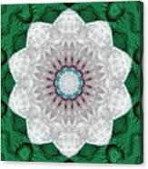 Wool Felt Kaleidoscope Canvas Print