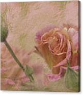 World Peace Roses With Texture Canvas Print