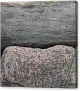 Worm Wood And Granite Canvas Print