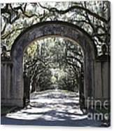 Wormsloe Plantation Gate 2x3 Canvas Print