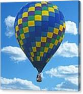 Would You Like To Fly Canvas Print