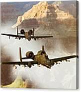 Wrath Of The Warthog Canvas Print