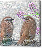 Wren Bird Sweethearts Canvas Print