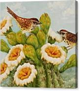 Wrens On Top Of Tucson Canvas Print
