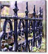 Wrought Iron Fence 1 Canvas Print