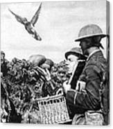 Wwi Releasing British Carrier Pigeon Canvas Print