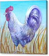 Wyandotte Rooster Canvas Print