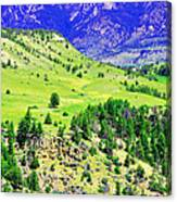 Wyoming Hillside Canvas Print