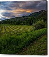 Wyoming Pastures Canvas Print
