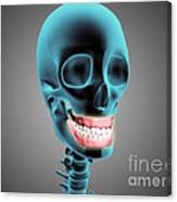 X-ray View Of Human Skeleton Showing Canvas Print