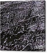 Xanada - Mars Canvas Print
