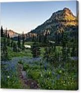 Yakima Peak At Sunrise Canvas Print