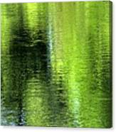 Yamhill River Abstract 24831 Canvas Print