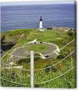 Yaquina Lighthouse From Salal Hill Trail  Canvas Print