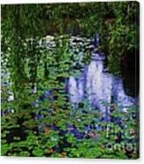 Vancouver, Yat Sen Park In The Rain Canvas Print