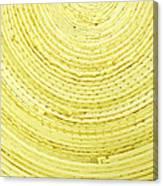 Yellow Arcs Canvas Print