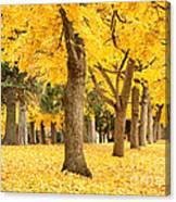 Yellow Autumn Wonderland Canvas Print