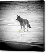 Yellow Ball Canvas Print