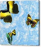 Yellow Butterflies - Spring Art By Sharon Cummings Canvas Print