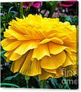Yellow By Nature Canvas Print