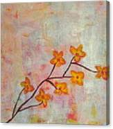 Yellow Cherry Blossoms Canvas Print