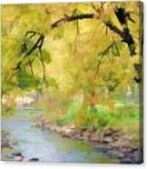 Yellow Flow Canvas Print