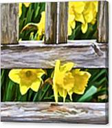 Yellow Flowers By The Bench Canvas Print