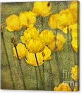Yellow Flowers With Texture Canvas Print
