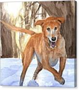 Yellow Lab Dog In Snow Watercolor Portrait Canvas Print