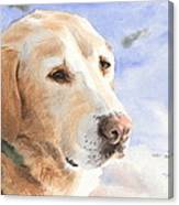 Yellow Lab In Snow Watercolor Portrait Canvas Print