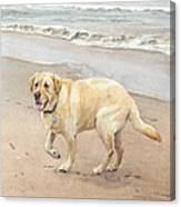 Yellow Lab On Beach Watercolor Portrait Canvas Print